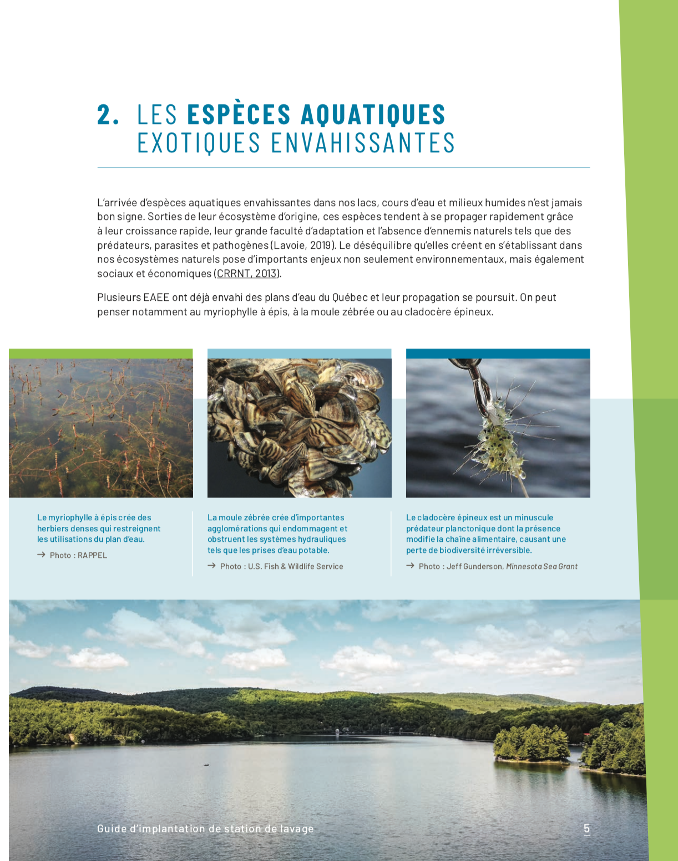 Ensemencement paillis gestion environnementale des fossés